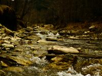 Valea-Doftanei-14